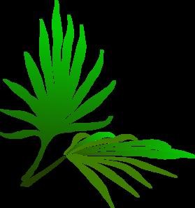 palm-sunday-branch-md